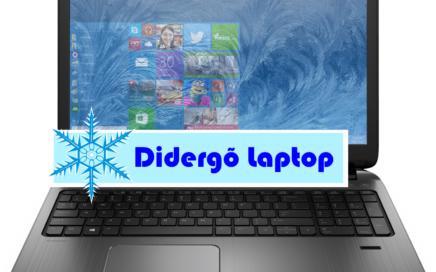 didergo-laptop
