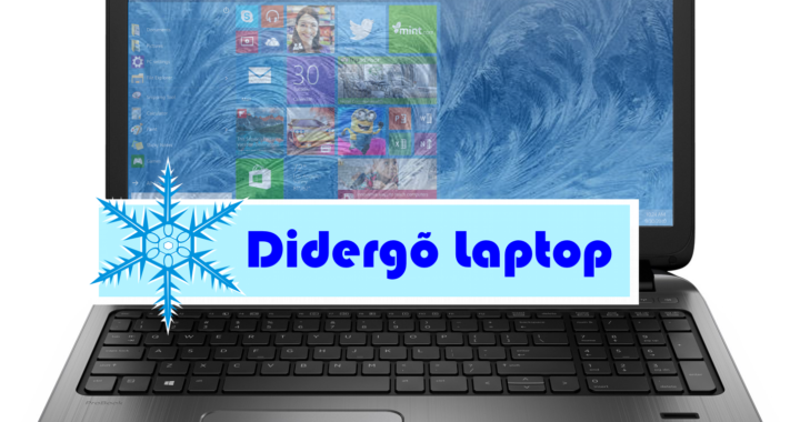 didergo-laptop